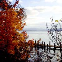Cayuga Lake - Autumn Dock