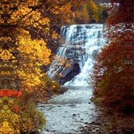 Ithaca Falls - Autumn Gold