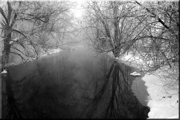 Dark reflections of winter trees shimmer on a misty river.