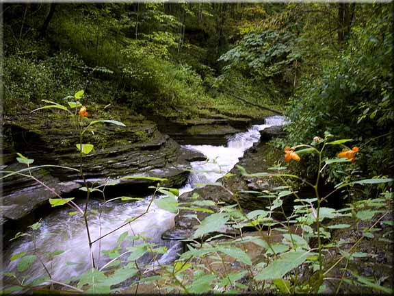 The stream that flows down to the large falls at Buttermilk Falls State park, Ithaca, NY