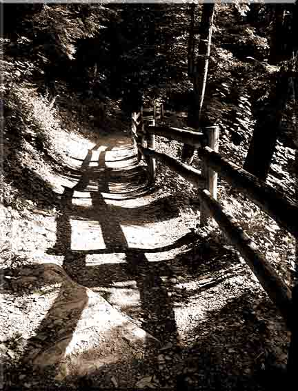 Zig-zag shadows on a path below Lucifer Falls in Robert Treman State Park in Ithaca, New York.