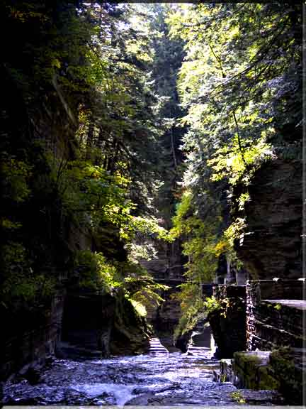 Shadows and sun dappling the cool gorge walkway in Robert Treman State Park.
