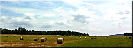 Hay bales scattered across the horizen.